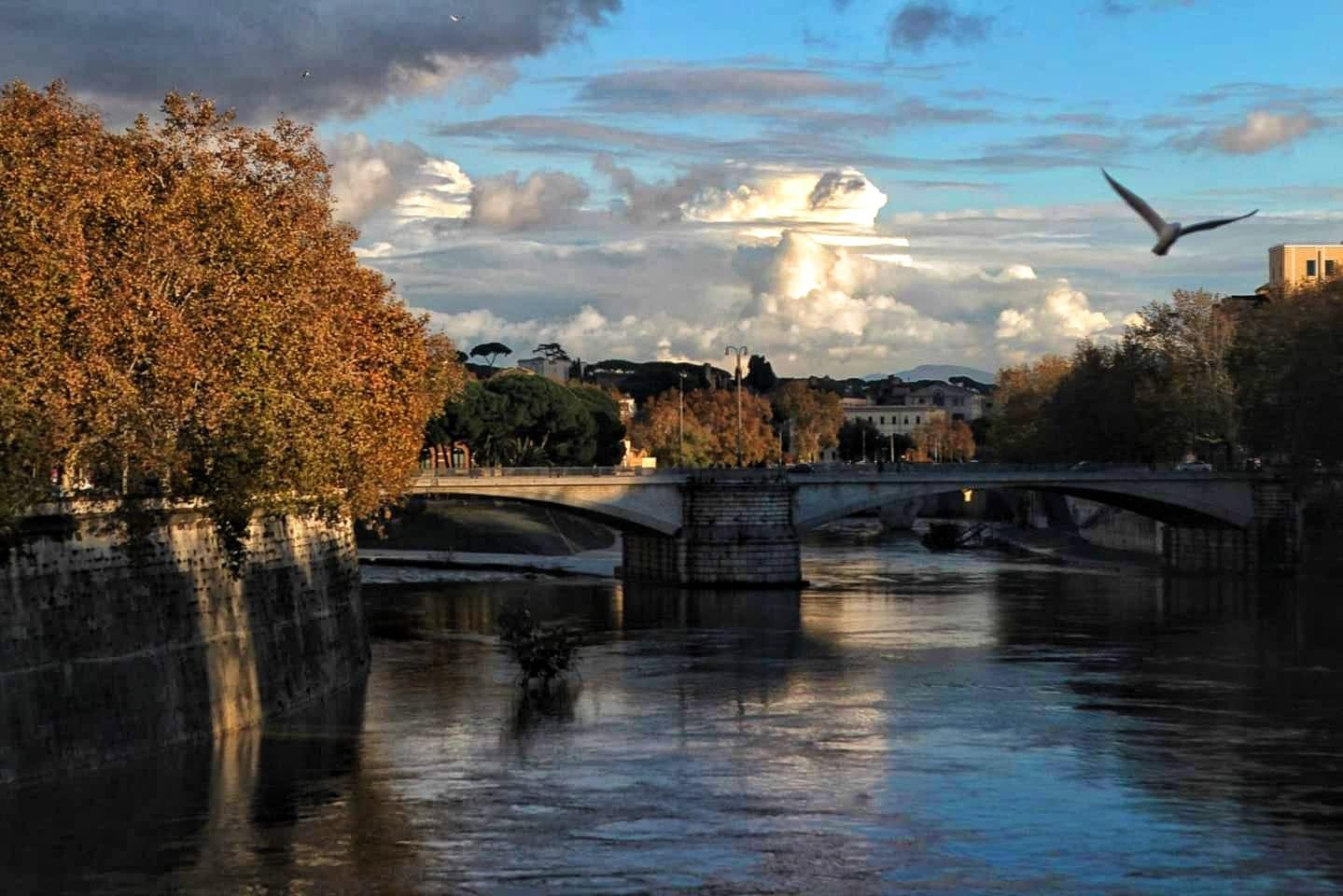 Lungotevere - Roma